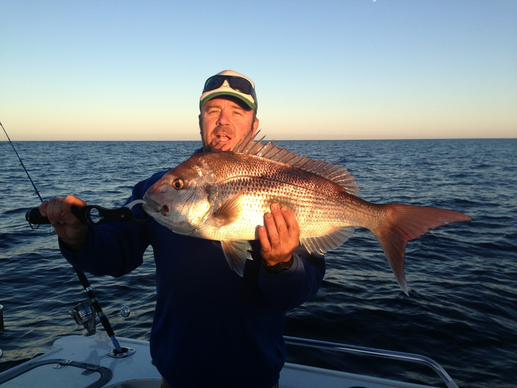 Pink Snapper off Hillarys