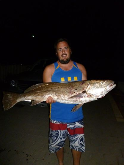 Mulloway caught off South Gates