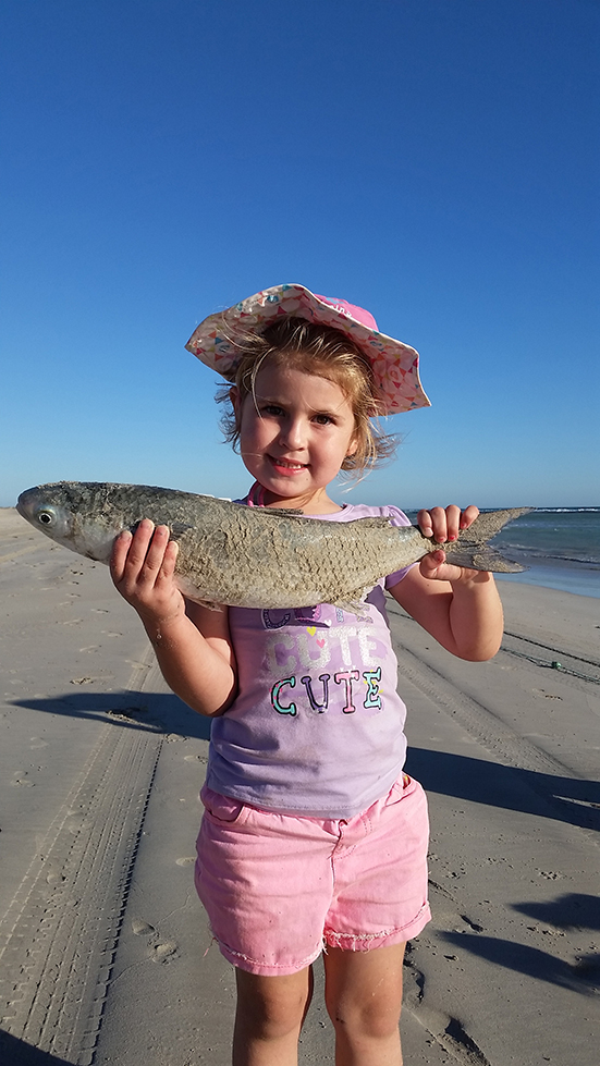 Mullet caught at Port Gregory - age is but a number ....