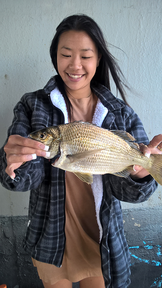 40cm Swan River Bream