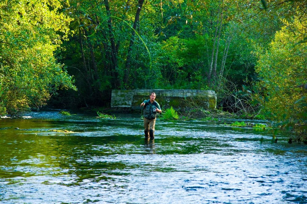 Fishing Shops Share the Best Methods for Fly Fishing