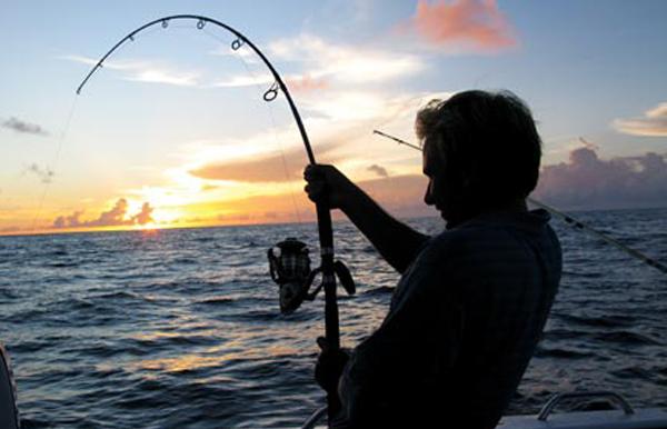 Kết quả hình ảnh cho fishing