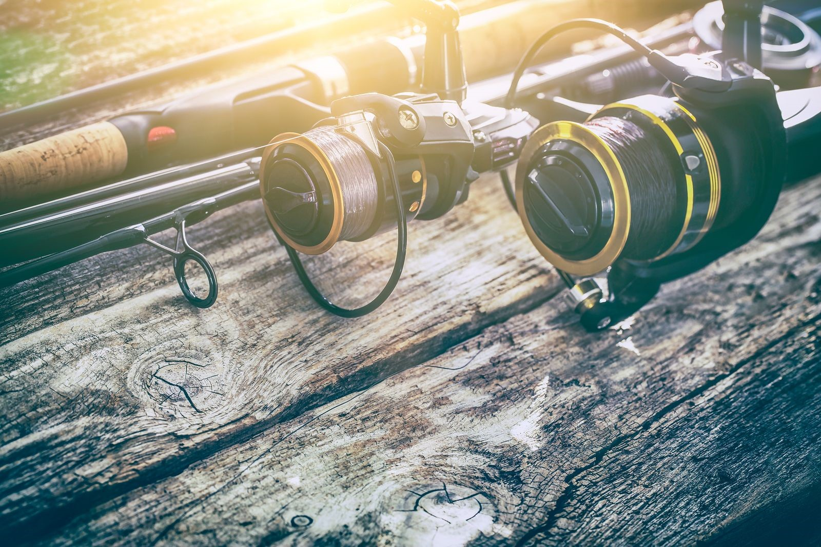 Bait and Tackle Basics Spinning Reel in your First Fishing Excursion