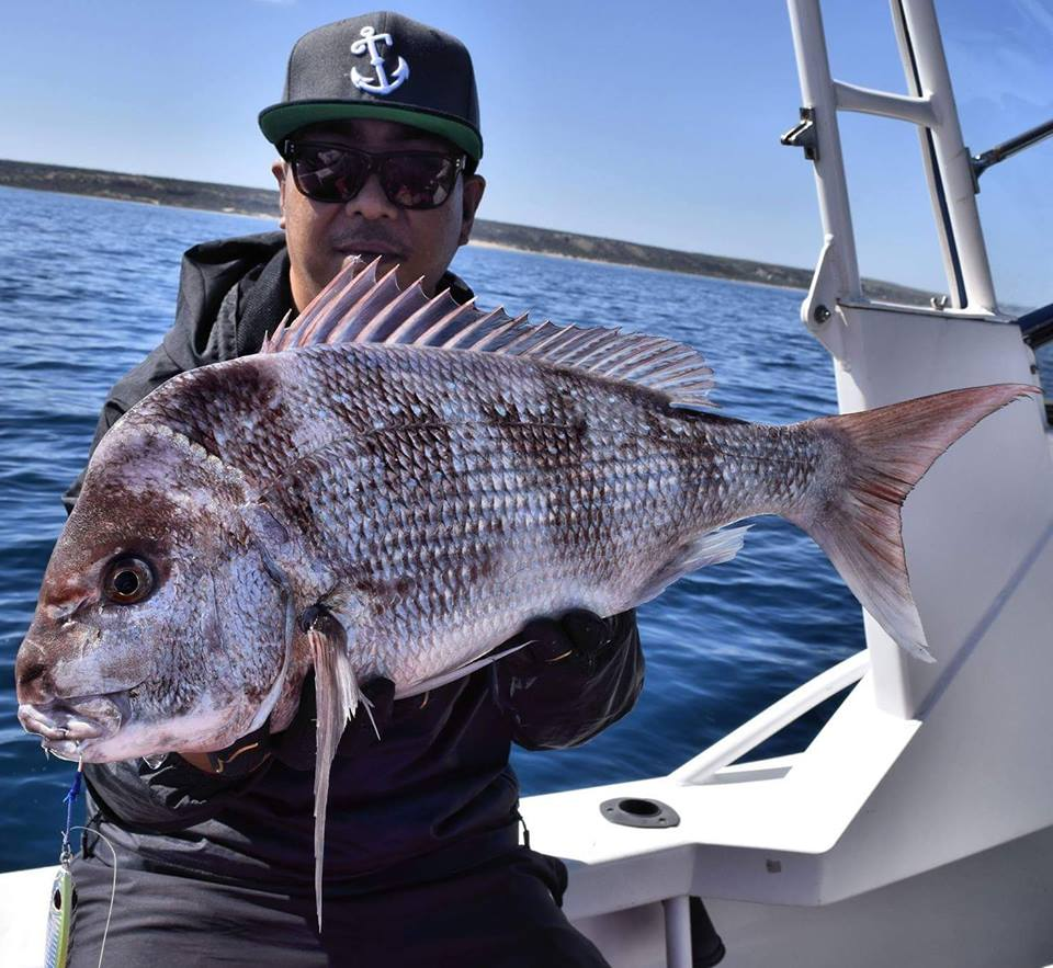 Fishing Report for the Geraldton Region 8th August  2017