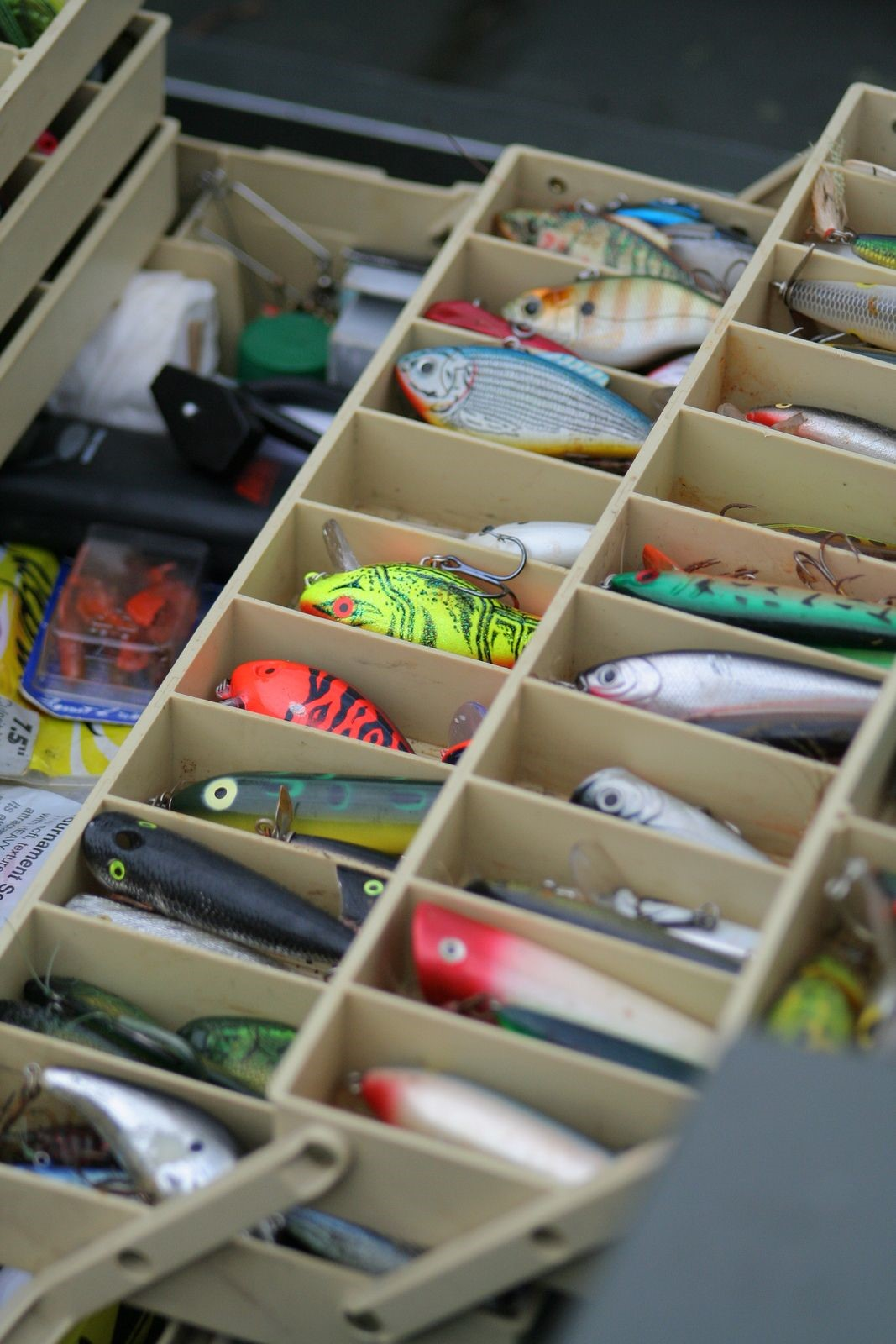 The Fishing Tackle Every Novice Fisherman Should Own Before Heading Out into the Water