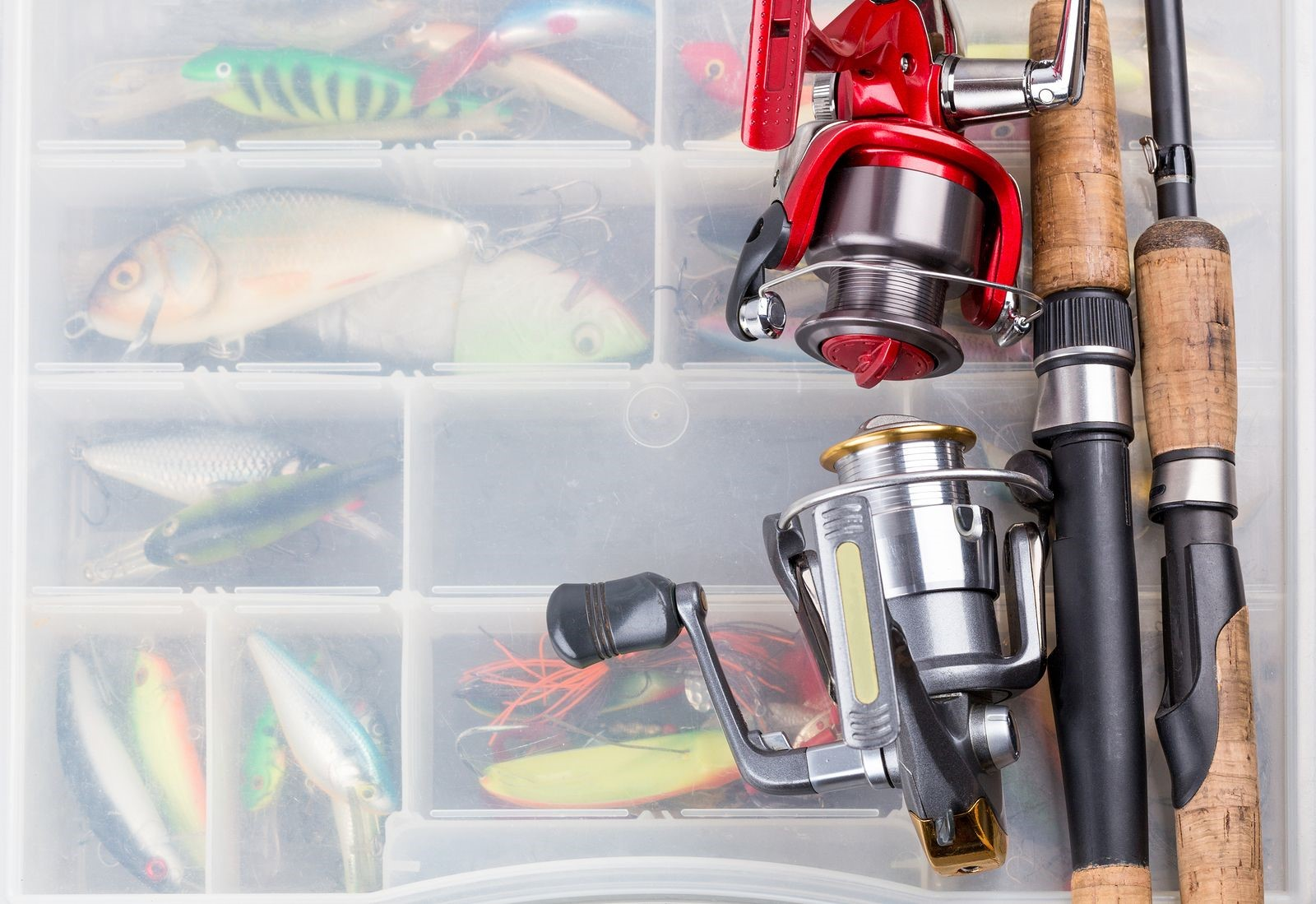 Fishing Shops Share a Helpful Guide to Buying the Right Fishing Gear for You