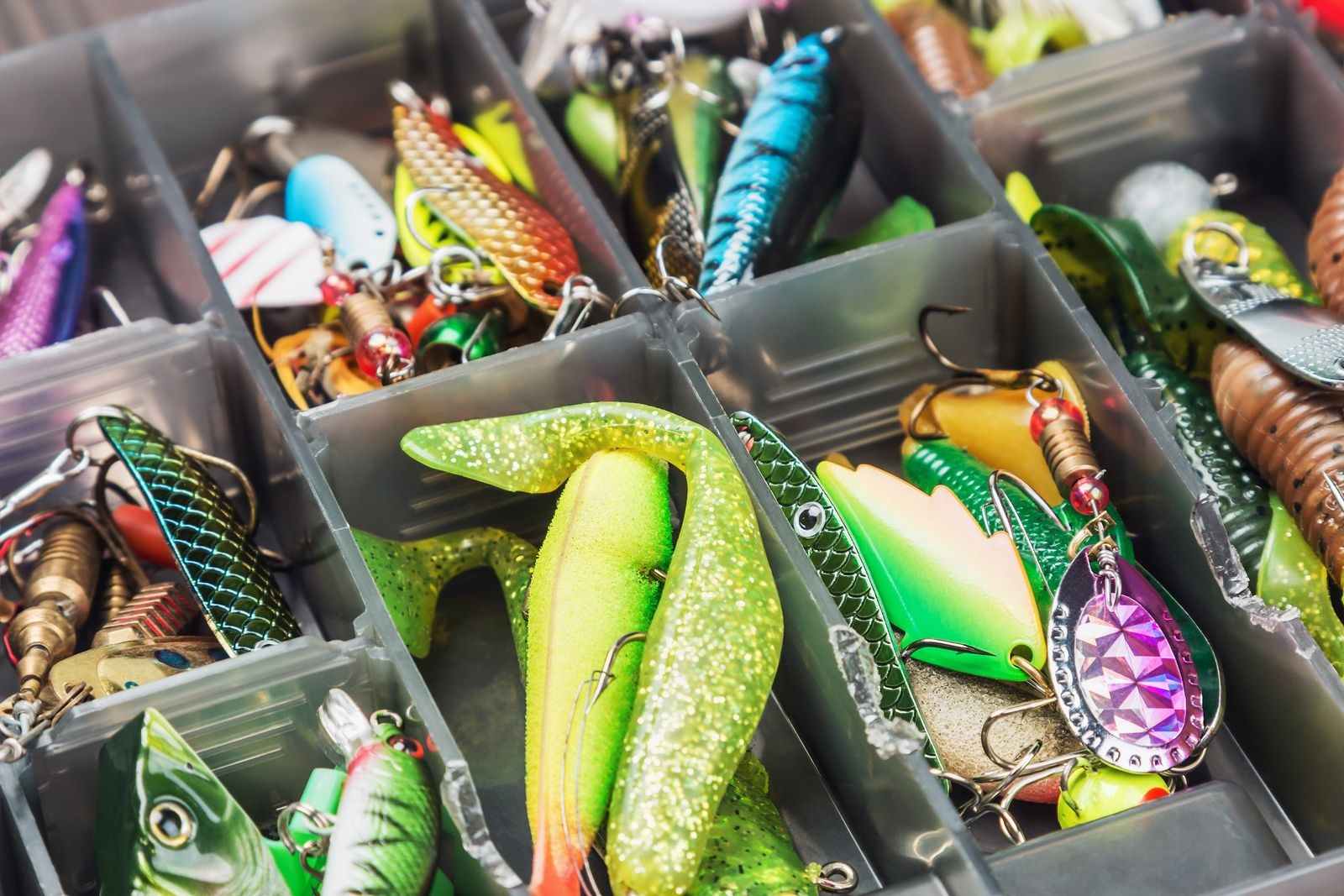 These Must-Have Items Should Always Be in Your Bait and Tackle Set